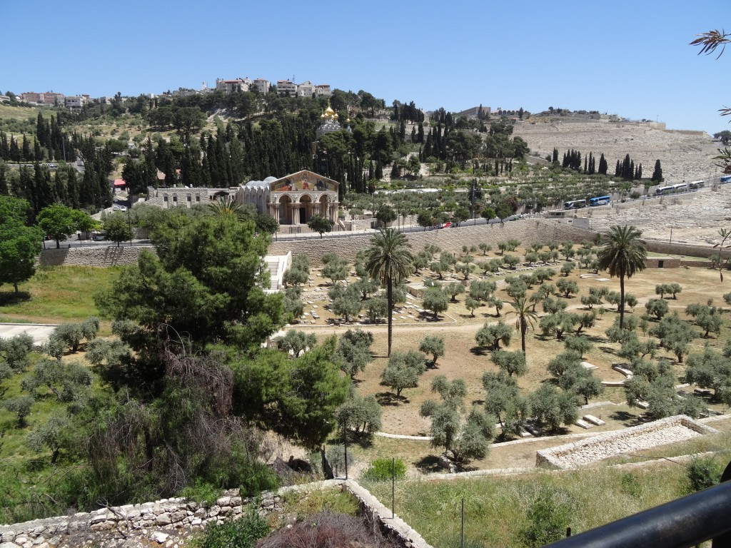 The Mount of Olives and the Garden of Gethsemane
