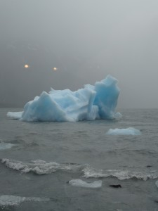 """Our first """"iceberg"""" of the trip"""