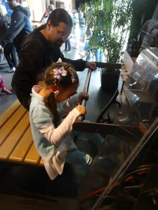Fun at the Exploratorium